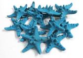 Bumpy Starfish - Blue
