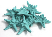 Bumpy Starfish - Sea Foam Green