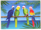 Christmas Parrots