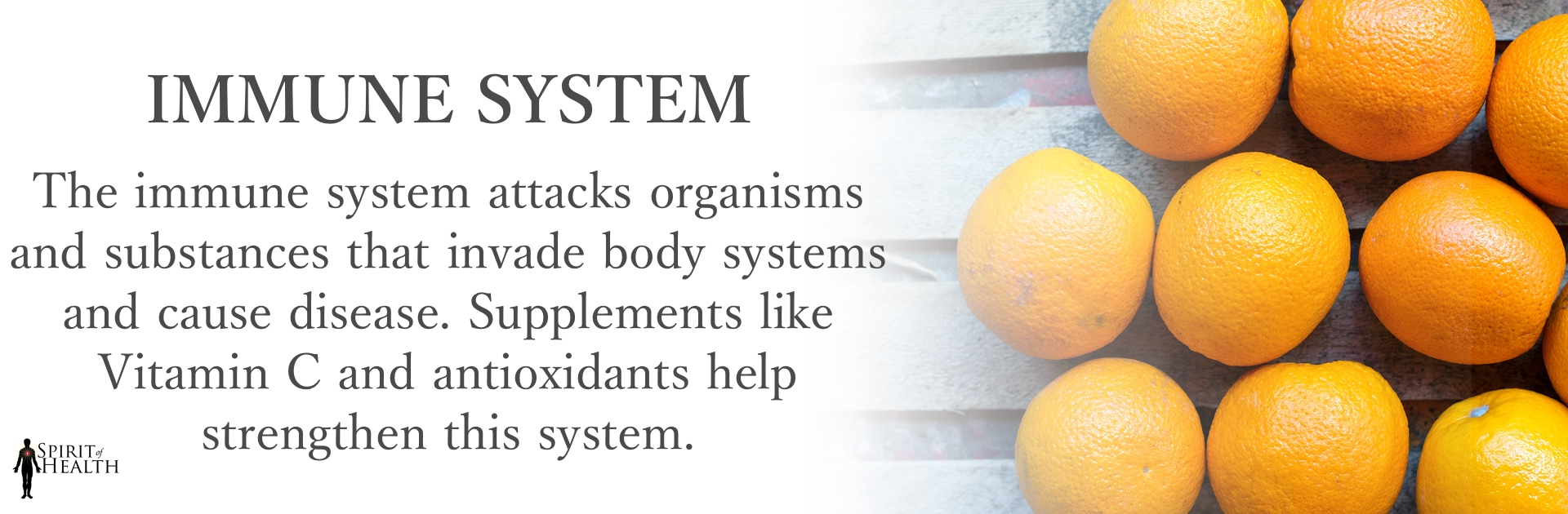 immune-system.jpg