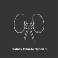 Kidney Cleanse Option 3