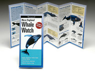 Whale Watch Guide of New England