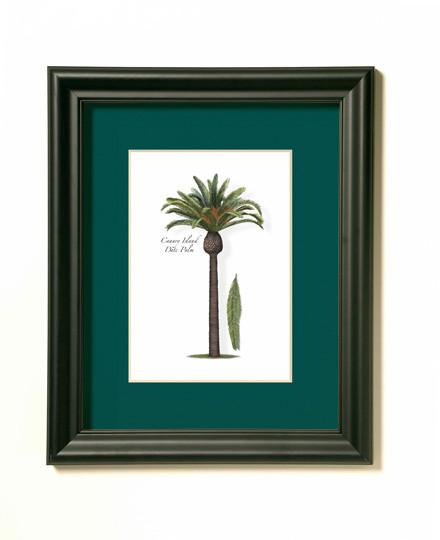 Date Palm Print