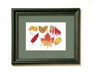 Fall Leaves Print