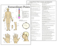 Extraordinary Acupuncture Points Chart