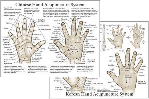 "Chinese & Korean Hand Therapy Hand Acupuncture Chart  8.5"" x 11"