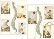 Chiropractic Posters -Set of 2