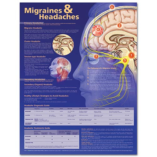 Migraine and Headaches Anatomical Chart, 2nd Edition