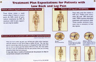 Low Back and Leg Pain Treatment Poster