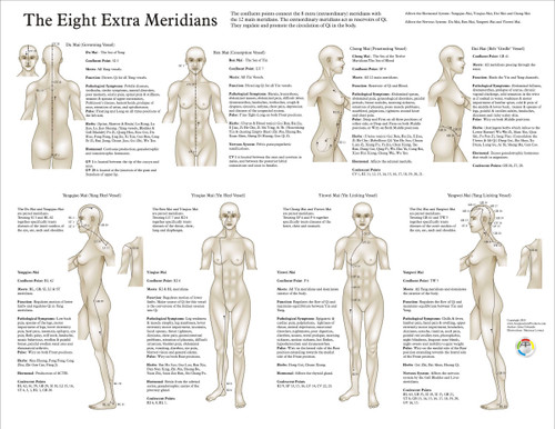 acupuncture meridian charts: Eight extra acupuncture meridians chart clinical charts and supplies