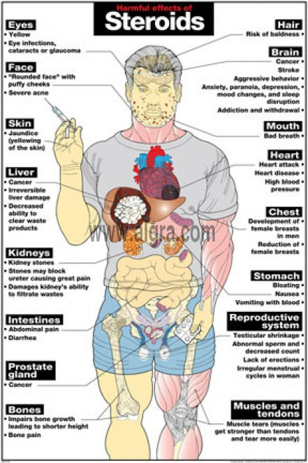 the harmful effects of anabolic steroids on the human body