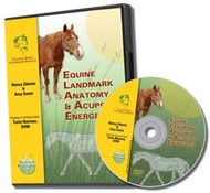 Equine Acupoint Energetics & Landmark Anatomy - DVD
