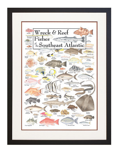 Fishes Poster