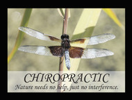 Chiropractic Poster