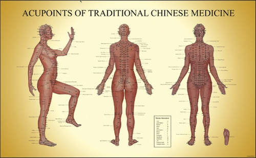 Acupuncture chart acupoints of tcm female clinicalcharts com