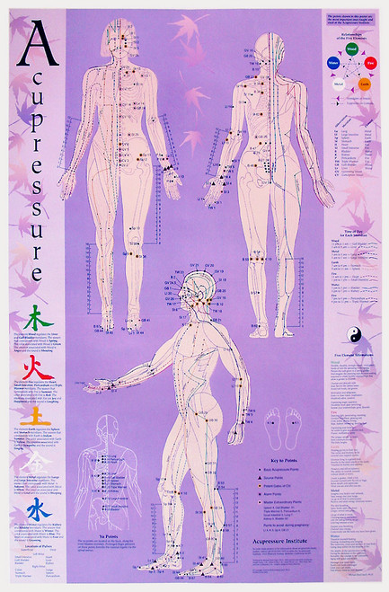 Acupuncture-Acupressure Point Reference Chart
