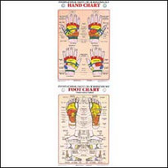 Hand & Foot Reflexology Chart