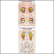 Hand & Foot Reflexology Chart