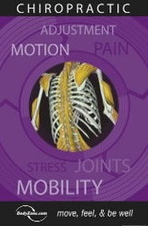 Chiropractic Pain and Stress Poster