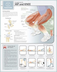 Hip and Knee Strengthening Exercises