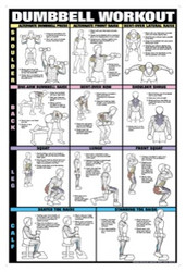 Dumbbell Exercises - Shoulder, Back, Leg, Calf Poster