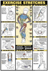 Exercise Stretchs Poster