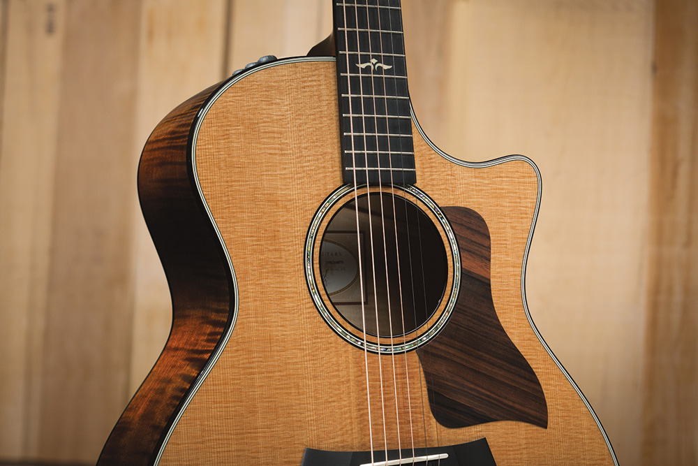 Shop Taylor Acoustic Guitars - Taylor 600 | Only at the Northeast Music Center Inc.