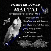Pet Headstone, Personalized memorial grave Marker. Free photo editing.