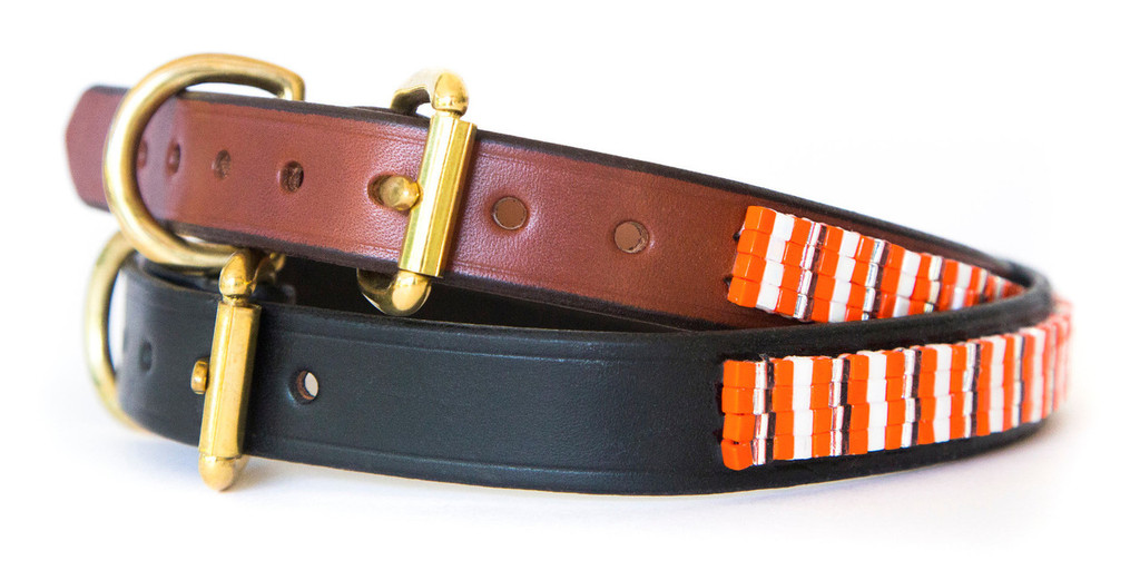 Creamsicle Pet Collar
