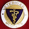 VETERINARY MEDICINE EMBLEM PIN - GPE-1049
