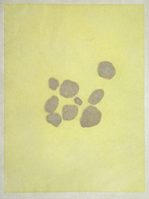 Ward, Liz, Poza, 2001, Color aquatint, Increments Suite, on Kitikata paper