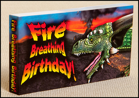 Fire Breathing Birthday! Flipbook Cover