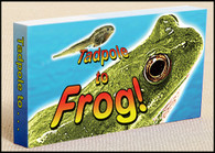 Tadpole to Frog Flipbook