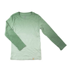 Basic Long Sleeve - Ombre Green