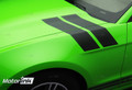 2013-2014 Ford Mustang Hash Marks Fender  Side Stripes
