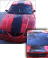 "1994-1998 Ford Mustang  ""Cobra"" Style Rally Racing Stripes Decals"