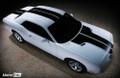 2008-2014 Dodge Challenger Bumper to Bumper Full Rally T-Stripe Kit