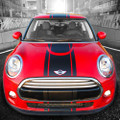 "2014 2015 2016 Mini Cooper Central Rally Racing Stripes ""Over the Top"""