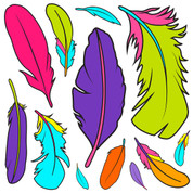 Bold Feathers Jumbo Decals