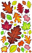 B. Vivi's Boutique Autumn Leaves Wall Decals