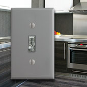 Clear Switches & Gray Wall Plates