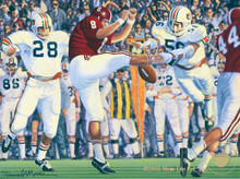 Iron Bowl 1972 by Daniel A. Moore