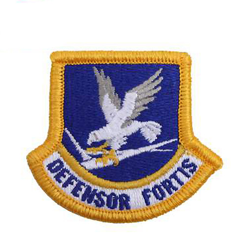 US Air Force Flash Patch - View