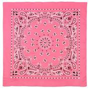 Pink Paisley Trainman Bandana