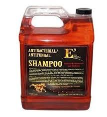 e3-shampoo-gal.jpg