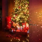 Magical Christmas Scene Backdrop