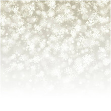 Falling snowflakes photography backdrop