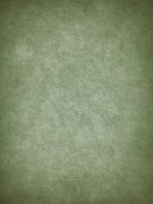 Green fine art backdrop