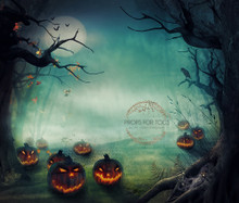 Spooky pumpkins - Halloween photographer backdrop