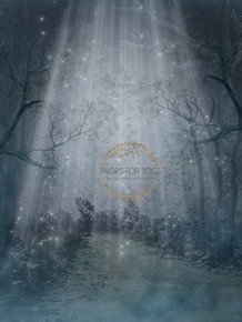 Night lit magical scene photographer backdrop